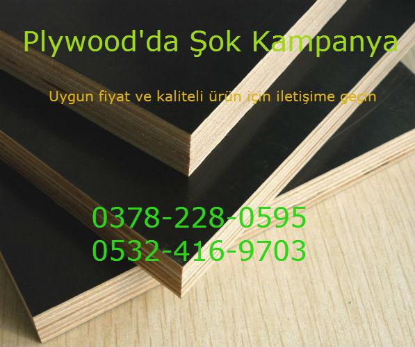 flywood1